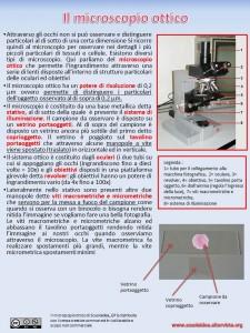 Il microscopio ottico