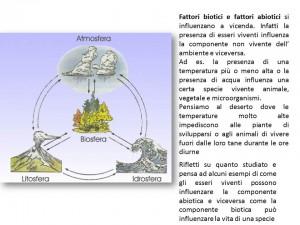 fattori biotici ed abiotici