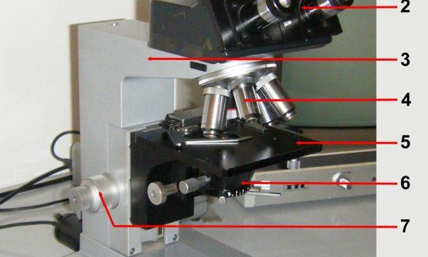 Il mondo invisibile: Il microscopio ottico