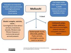 Mappa molluschi