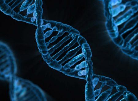 La carta di identità dei viventi: il DNA