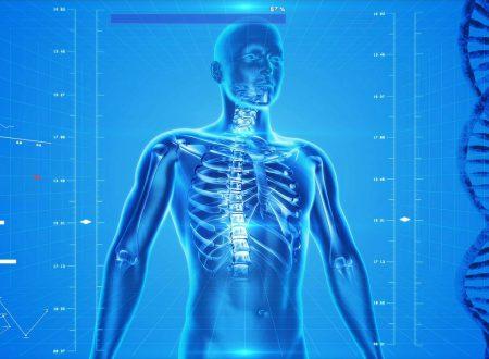 Introduzione allo studio del corpo umano