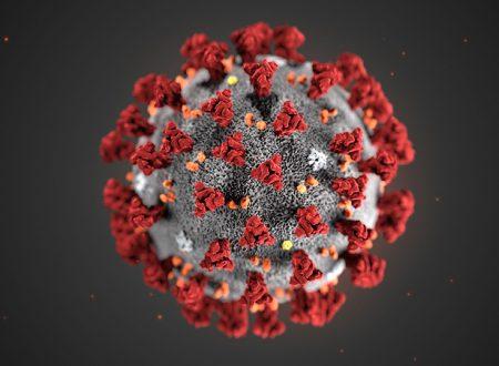 Conoscere il Coronavirus per evitare di restare intrappolati dalle Fake News